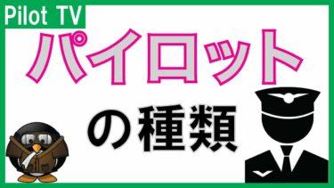 【パイロットの種類】日本と世界のいろいろなパイロットの種類!