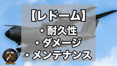 【レドーム②】レドームの耐久性は?ダメージ&メンテナンスについて