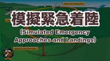 【飛行機の着陸】 模擬の緊急着陸(Simulated Emergency Approaches and Landings)